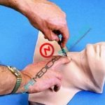 Cricothyrotomy Simulator-0