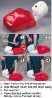 Basic Buddy™ CPR Manikin adult-0