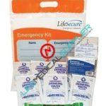 Basic Emergency Kit One person 3 days-0